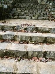 abandoned stone stairs image