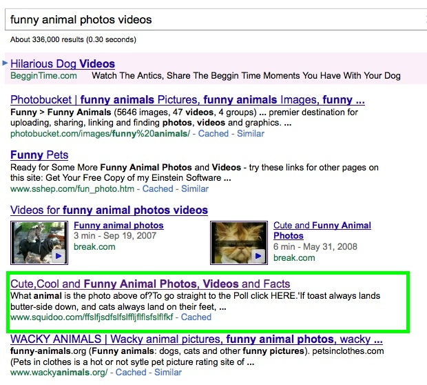 google search screenshot funny animals
